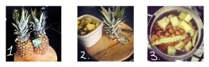 pineapple blog ed